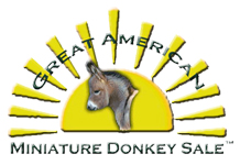 Great American Miniature Donkey Sale Logo - White  Bkg